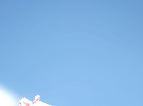 白飛び写真