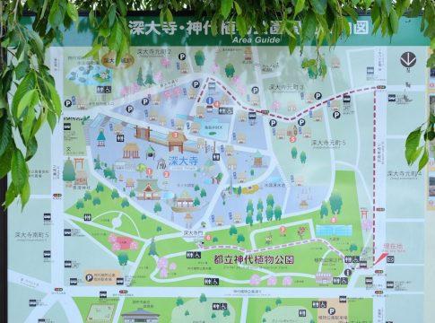 神代植物公園地図